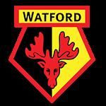Voetbalreizen Watford