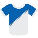 Voetbalreizen TSG 1899 Hoffenheim